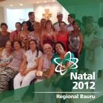bauru_natal_2012
